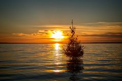Hungarian Christmas tradition to set Christmas tree in the lake Balaton, village Szigliget.  Stock Photography