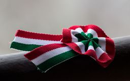 Hungarian Cockade - Magyar kokárda. The hungarian red - white - green national cockade with blurred gray background on an iron bar Stock Photography