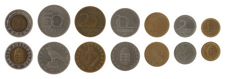 Hungarian Coins Isolated on White Royalty Free Stock Photo