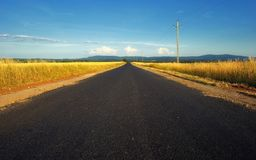 Countryside road in Hungary Stock Photo