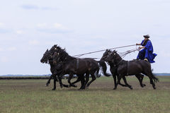Hungarian Cowboys Royalty Free Stock Image