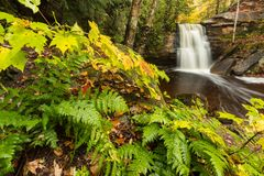 Hungarian Falls in the Keweenaw Peninsula of Michigan. Fall foliage and ferns frame Hungarian Falls in the Keweenaw Peninsula of Michigan. Dover Creek spills Royalty Free Stock Photo
