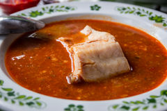 Hungarian fish soup with paprika Stock Images