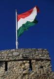 Hungarian flag Stock Image