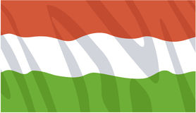 Hungarian flag Royalty Free Stock Images