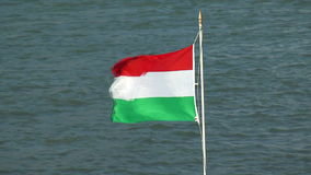 Hungarian flag stock footage