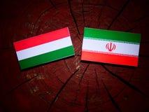 Hungarian flag with Iranian flag on a tree stump isolated. Hungarian flag with Iranian flag on a tree stump Stock Photo
