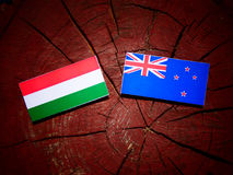 Hungarian flag with New Zealand flag on a tree stump isolated. Hungarian flag with New Zealand flag on a tree stump stock illustration