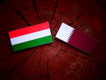 Hungarian flag with Qatari flag on a tree stump isolated. Hungarian flag with Qatari flag on a tree stump Royalty Free Stock Photography