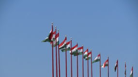 Hungarian Flags. Numerous Hungarian flags standing in a line in Budapest Stock Photos