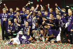 Hungarian Football Cup Final Royalty Free Stock Image