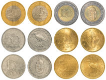 Hungarian forint coins collection set. Isolated on white background Royalty Free Stock Photo