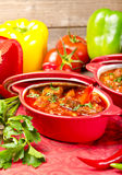 Hungarian goulash Royalty Free Stock Image