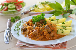 Free Hungarian Goulash Royalty Free Stock Images - 26017219