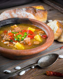 Hungarian goulash with beans Royalty Free Stock Photos