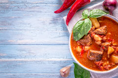 Hungarian goulash on cyan background with copy space stock images