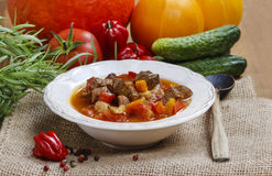Hungarian goulash with meat Stock Images