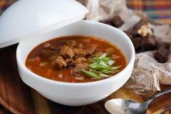 Hungarian goulash soup Stock Image
