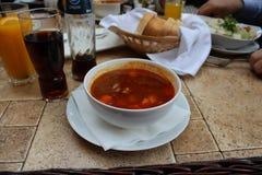 Hungarian goulash soup Royalty Free Stock Image