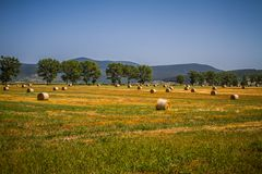 Hungarian landscape, large fields with hay Stock Image