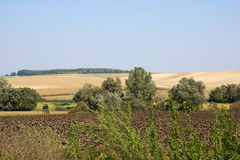 Hungarian landscape Stock Images