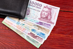 Hungarian money in the black wallet Royalty Free Stock Photo