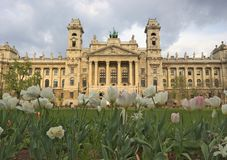 Hungarian Museum of Ethnography. Field of tulips in front of hungarian Museum of Ethnography at Kossuth square in Budapest royalty free stock photo