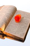 Hungarian old bible. With flower Royalty Free Stock Photos