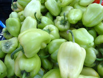 Hungarian pepper, Capsicum annuum Stock Image
