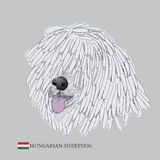 Hungarian sheepdog portrait. Stock Images
