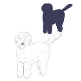 Hungarian sheepdog silhouette and sketch. Stock Photos