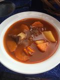 Hungarian soup-goulash the national stock photography