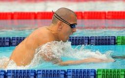 Hungarian World champion Laszlo Cseh Stock Images