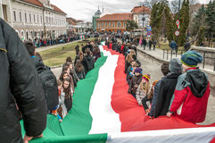 Hungarians day Royalty Free Stock Photos