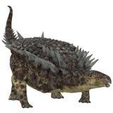 Hungarosaurus草食动物恐龙 免版税库存照片