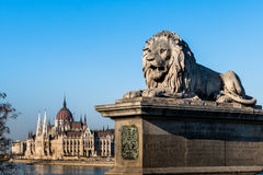Hungary, budapest, parliament royalty free stock image