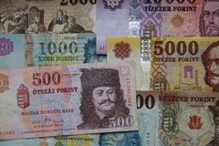Hungary currency. Currency of Hungary - banknotes of 500, 1000, 2000, 5000 and 10000 forints Stock Images