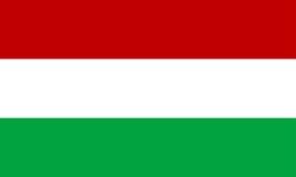 Hungary flag royalty free illustration