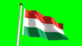 Hungary flag stock video