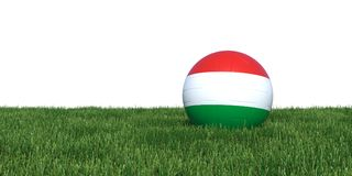 Hungary Hungarian flag soccer ball lying in grass world cup 2018. Isolated on white background. 3D Rendering, Illustration Stock Photos