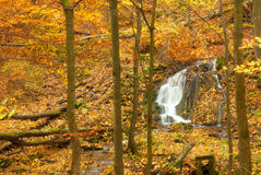 Hungary, Szalajka-valley in autumn Royalty Free Stock Photography
