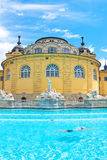 Hungary: Szechenyi bath spa in Budapest. Vertical photo Royalty Free Stock Photography