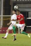 Hungary vs. Albania friendly football match stock photos