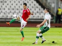 Hungary vs. Ireland friendly football game Royalty Free Stock Photo