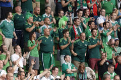 Hungary vs. Northern Ireland UEFA Euro 2016 qualifier football m Stock Images