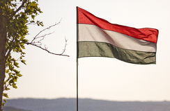Hungary waving flag Stock Photography