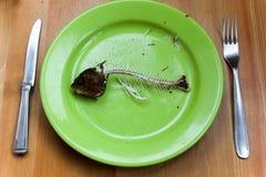 Hunger Lizenzfreie Stockfotografie