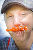 Hunger For Golf. Is A Closeup Face Of A Funny And Crazy Golfer Eating On A Mouthful Of Golfing Tees To Suppress His Insatiable Hunger For His Favorite Sport Royalty Free Stock Photography
