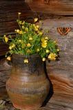 Hungerweeds en maceta y mariposa de cerámica Imagen de archivo