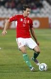 Hungria contra Liechtenstein (5: 0) Fotografia de Stock Royalty Free